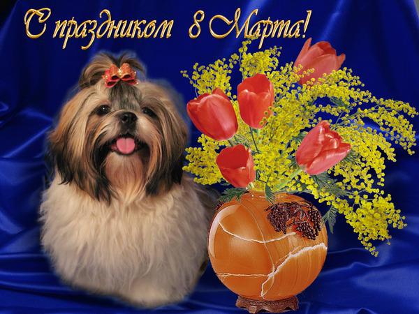 открытка 8 марта с собакой