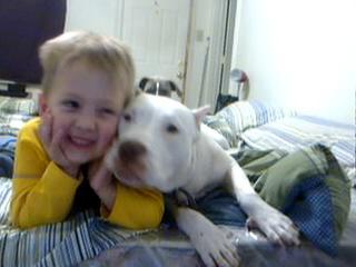 питбуль и ребёнок