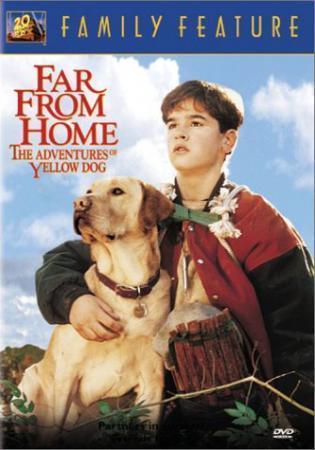 Вдали от дома: Приключения жёлтого пса смотреть онлайн фильм