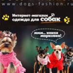 дежда для собак в интернет магазине
