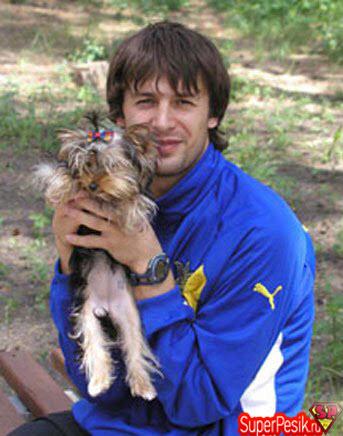 sobaki-zvezd-sport-shovkovsky