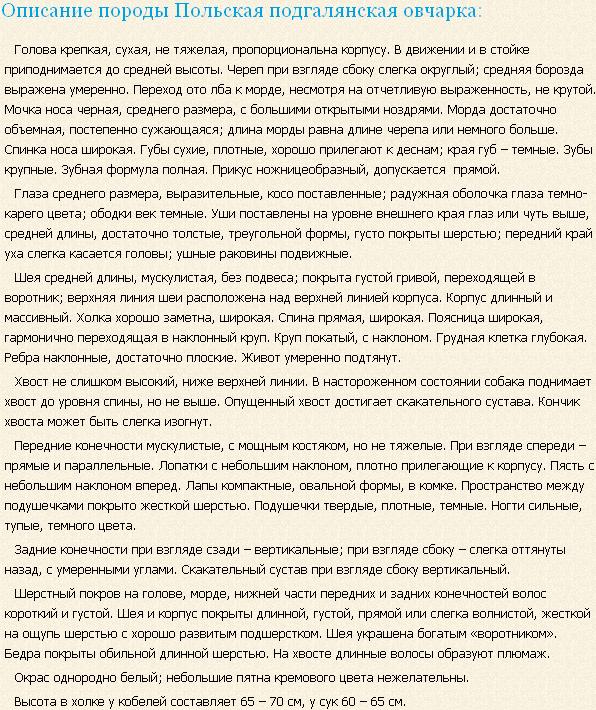 Описание породы польская подгалянская овчарка