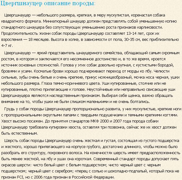 Описание породы цвергшнауцер