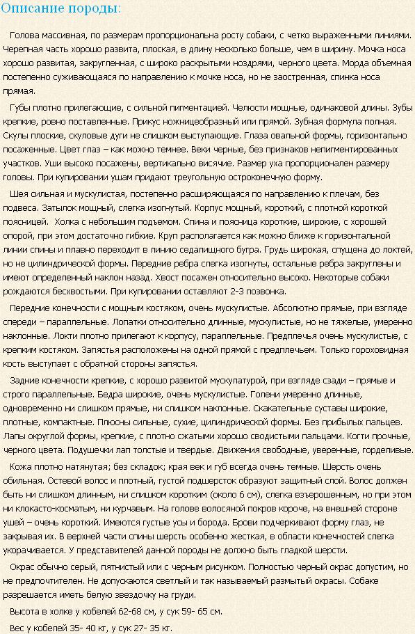 Описание породы Фландрский бувье