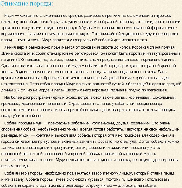 Описание породы муди