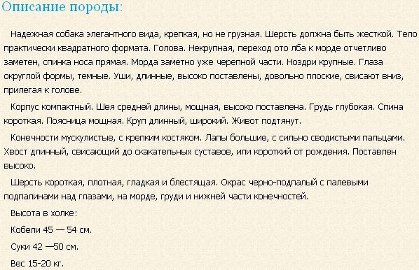 smalandskaya-gonchaya