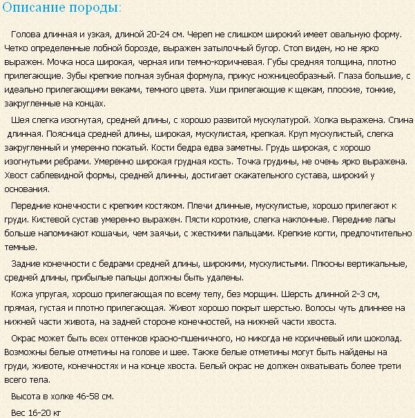 Описание породы позавский гонич