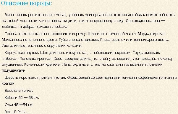 starodatskaya-legavaya-opisanie