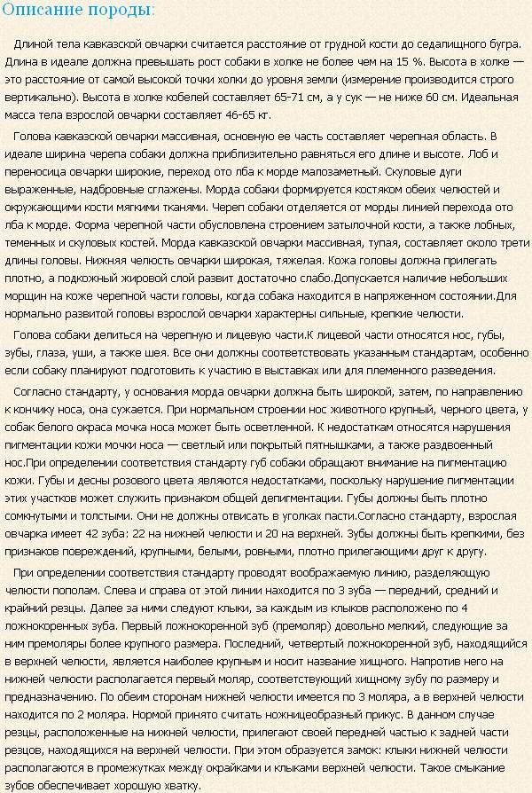 kavkazskaya-ovcharka-opisanie