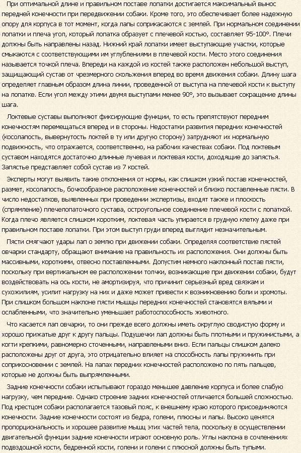 kavkazskaya-ovcharka-opisanie4