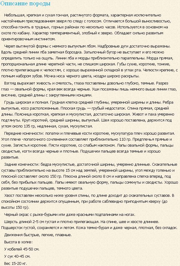 slovackij-kopov-opisanie