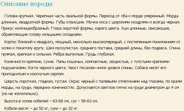 cherno-podpalyj-kunxaund