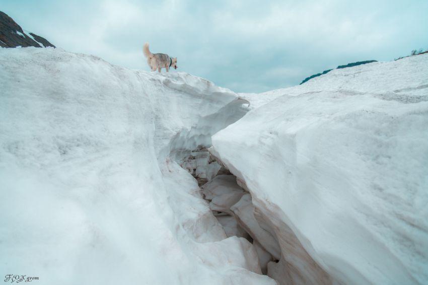 xaski-na-prirode-foto30
