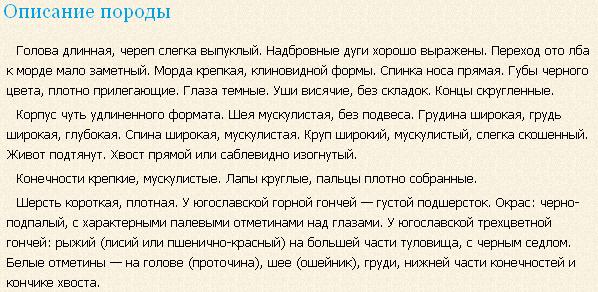 yugoslavskaya-trexcvetnaya-gonchaya